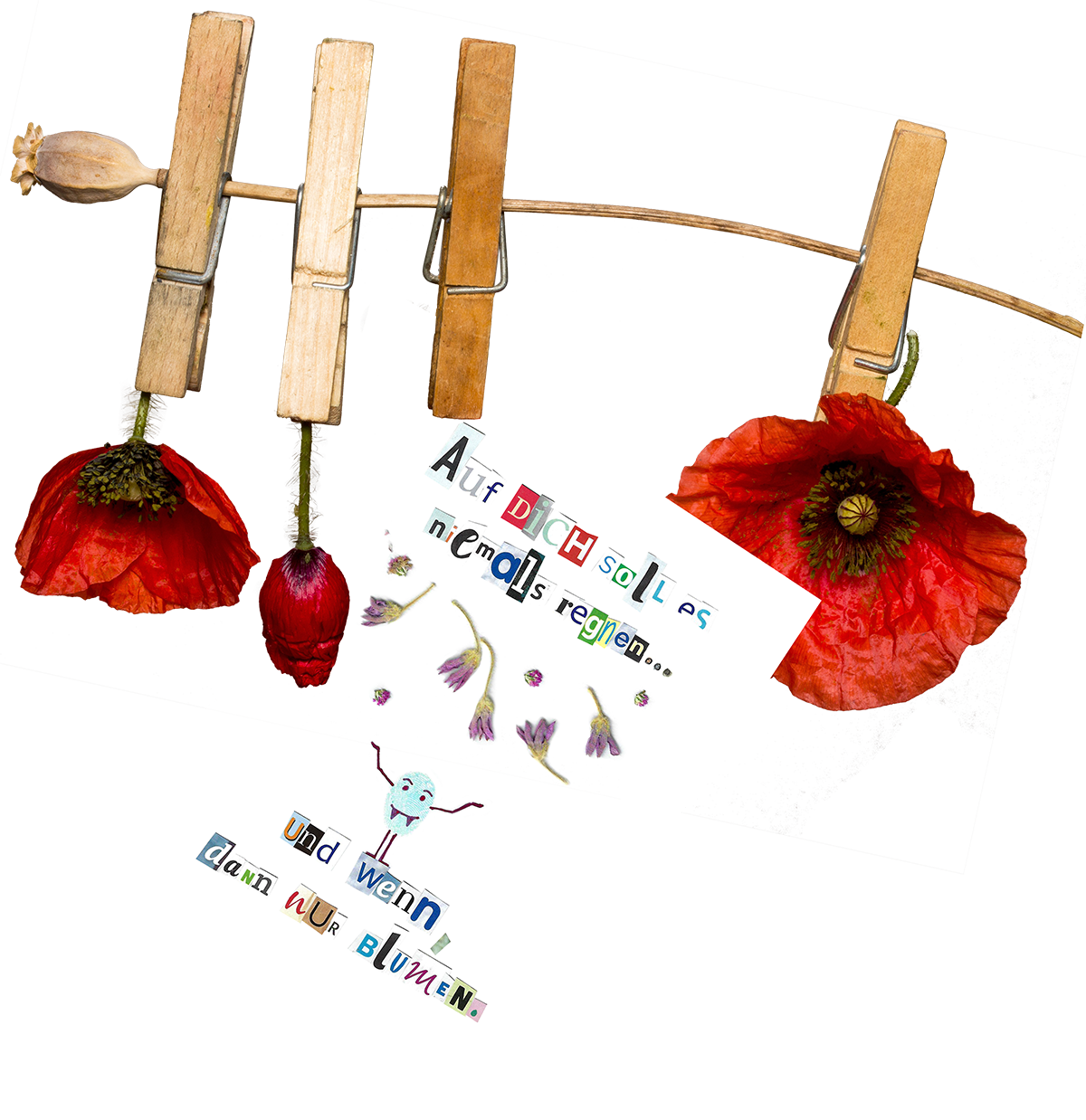 BlumenRegnengroesser_web