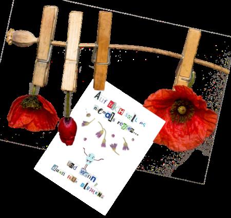 BlumenRegnen